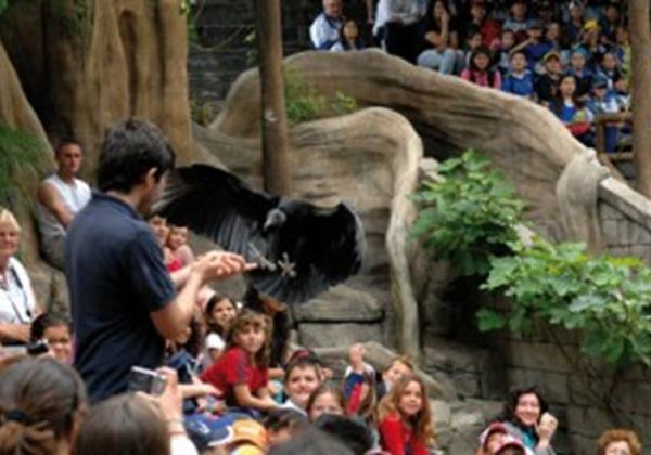 BioParc Shows (Small Image)